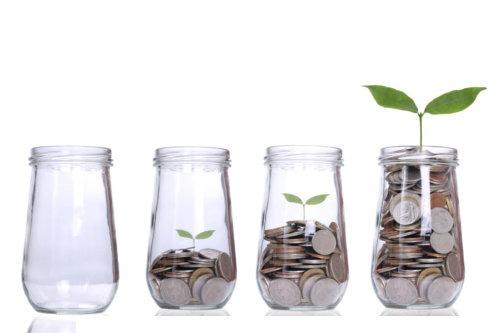 money growing plant m