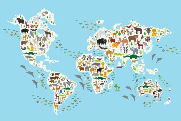 species best environmental news 2020